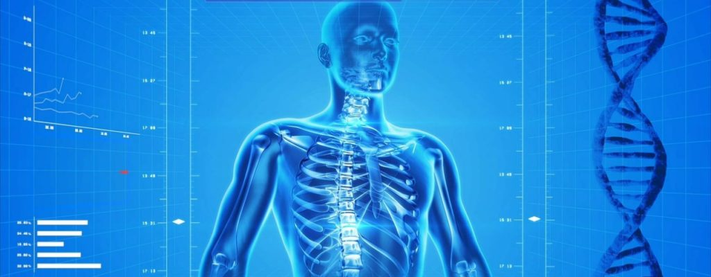 Digital image of human skeleton promoting Digital health technology catalyst grant funding competition